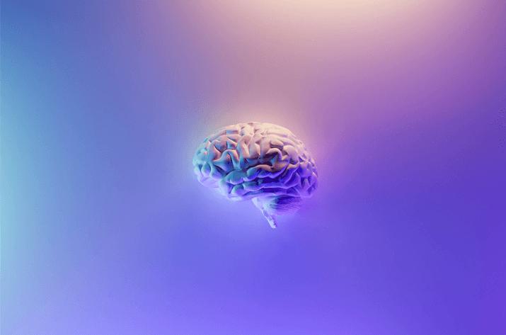 The Ambidextrous Brain: Demystifying the Left vs Right Brain Debate