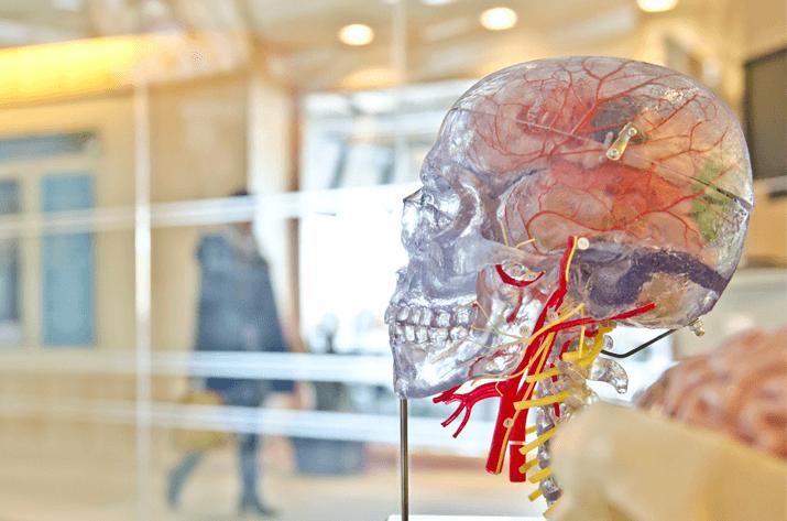 A Neurological Case Study: Historical Perspectives on Lobotomy