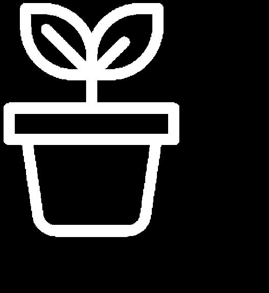 health benefits icon