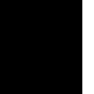 komplette Transparenz Icon