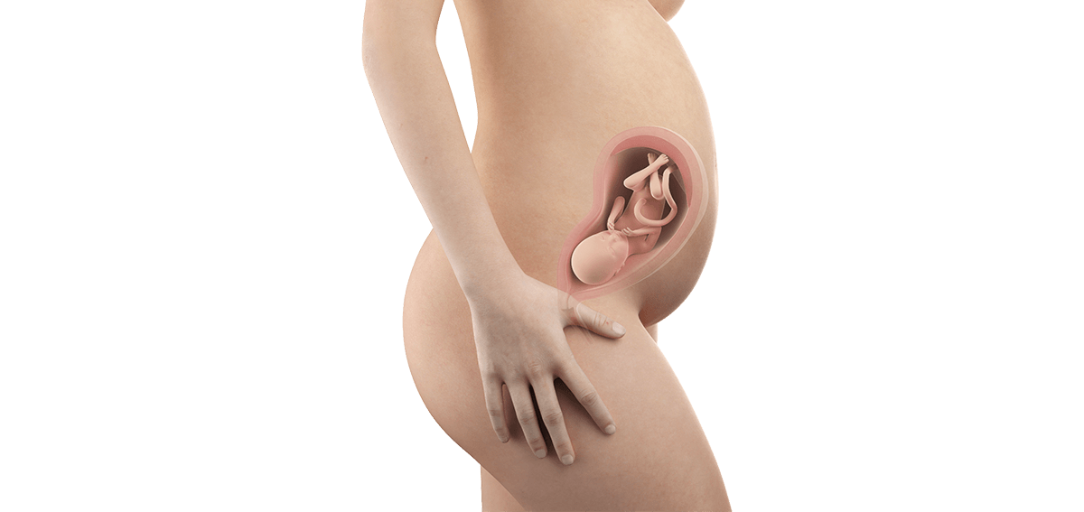 Schwangerschaftswoche 28