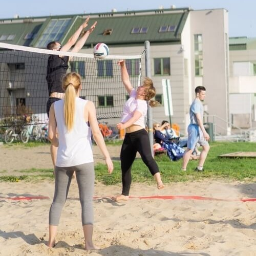 People playing volleyball outdoor