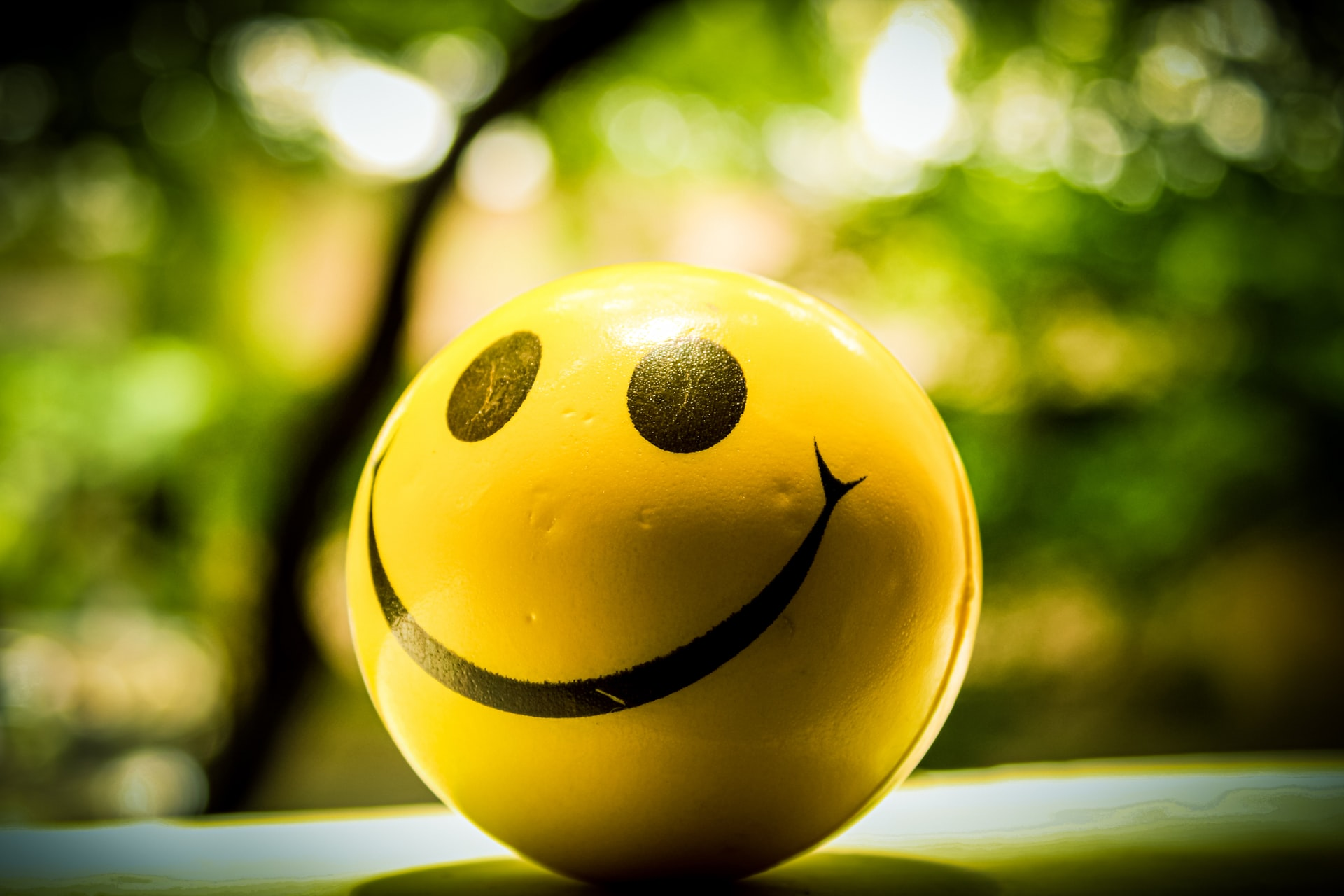 A shallow-focus image of a yellow ball with a smiley face on it sitting on the ground outside in front of some trees