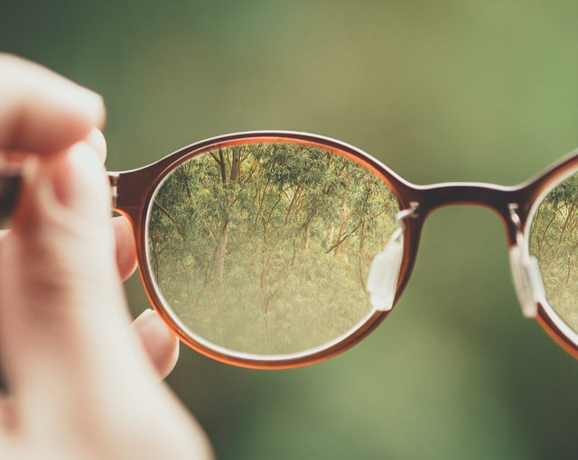 A hand holds glasses that bring a blurry background of vegetation into focus.