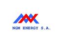 Ngm energy - Pool logo