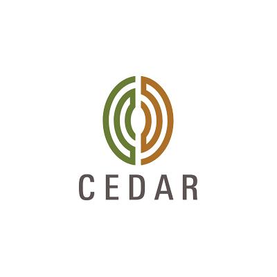 Cedar Management Consulting