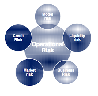 Chart showing the overlap between Operational Risk and other risks