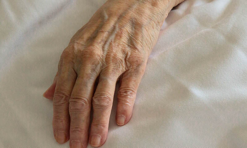 Old Lady Hand Mature Skin