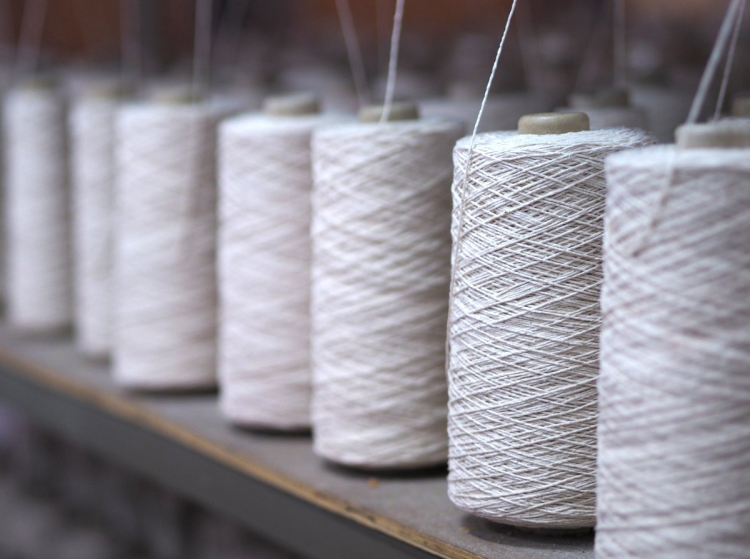 Sustainable Socks Manufacturer in Europe