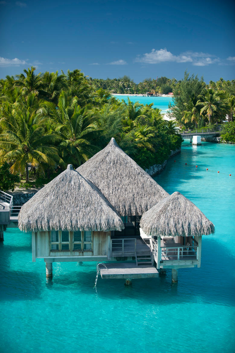 Beautiful front view of Overwater Villa at St. Regis Bora Bora Resort with palms in the background atop a clear blue lagoon.