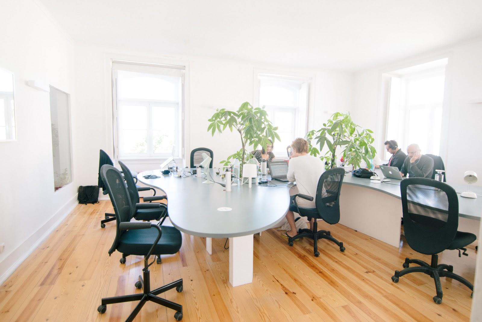 Bureau avec parquet chaises noires vies et grandes plantes vertes