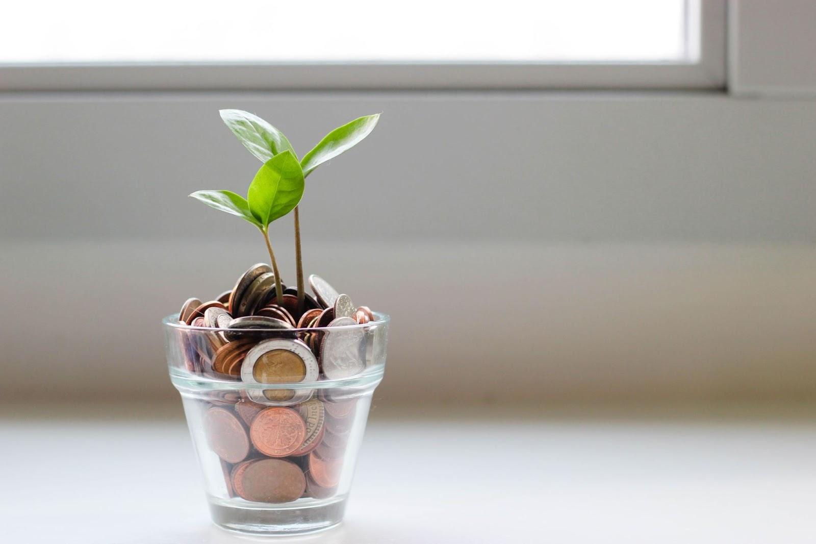 Impact Investing : la nouvelle tendance de la finance durable ?