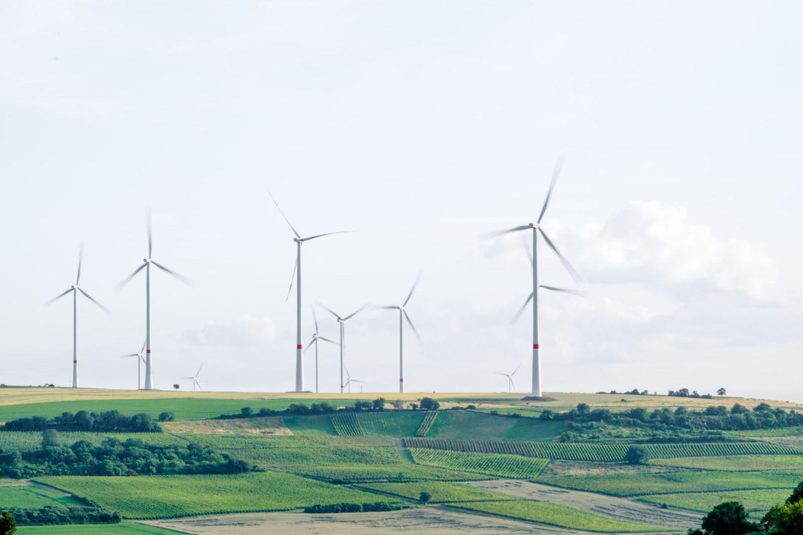 Champs à perte de vue avec éoliennes qui se dressent dans le ciel produisant de l'énergie renouvelable.