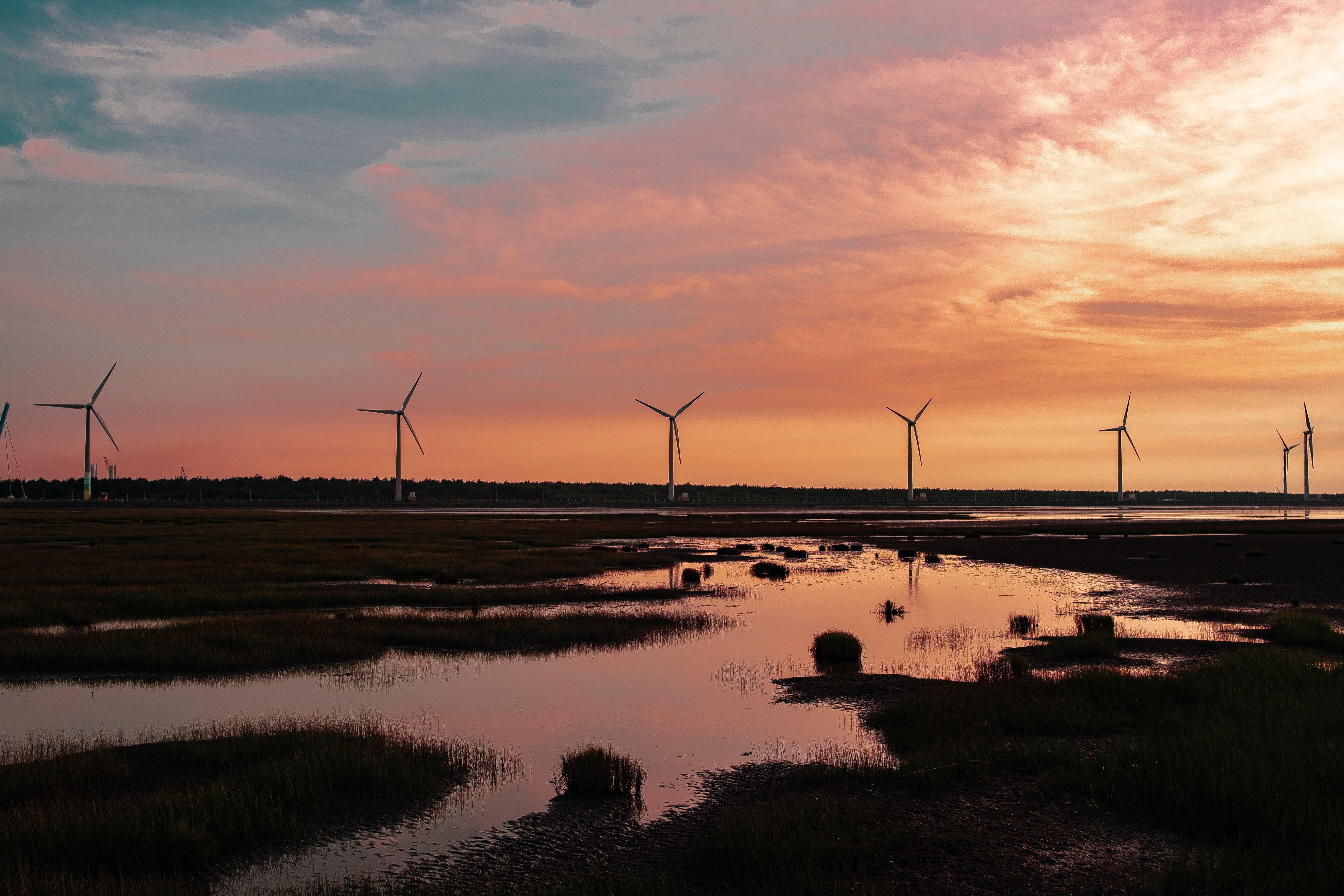 Les énergies renouvelables et la neutralité carbone