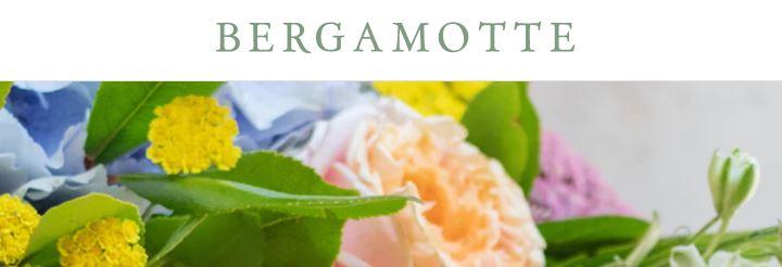 Bergamotte, l'atelir
