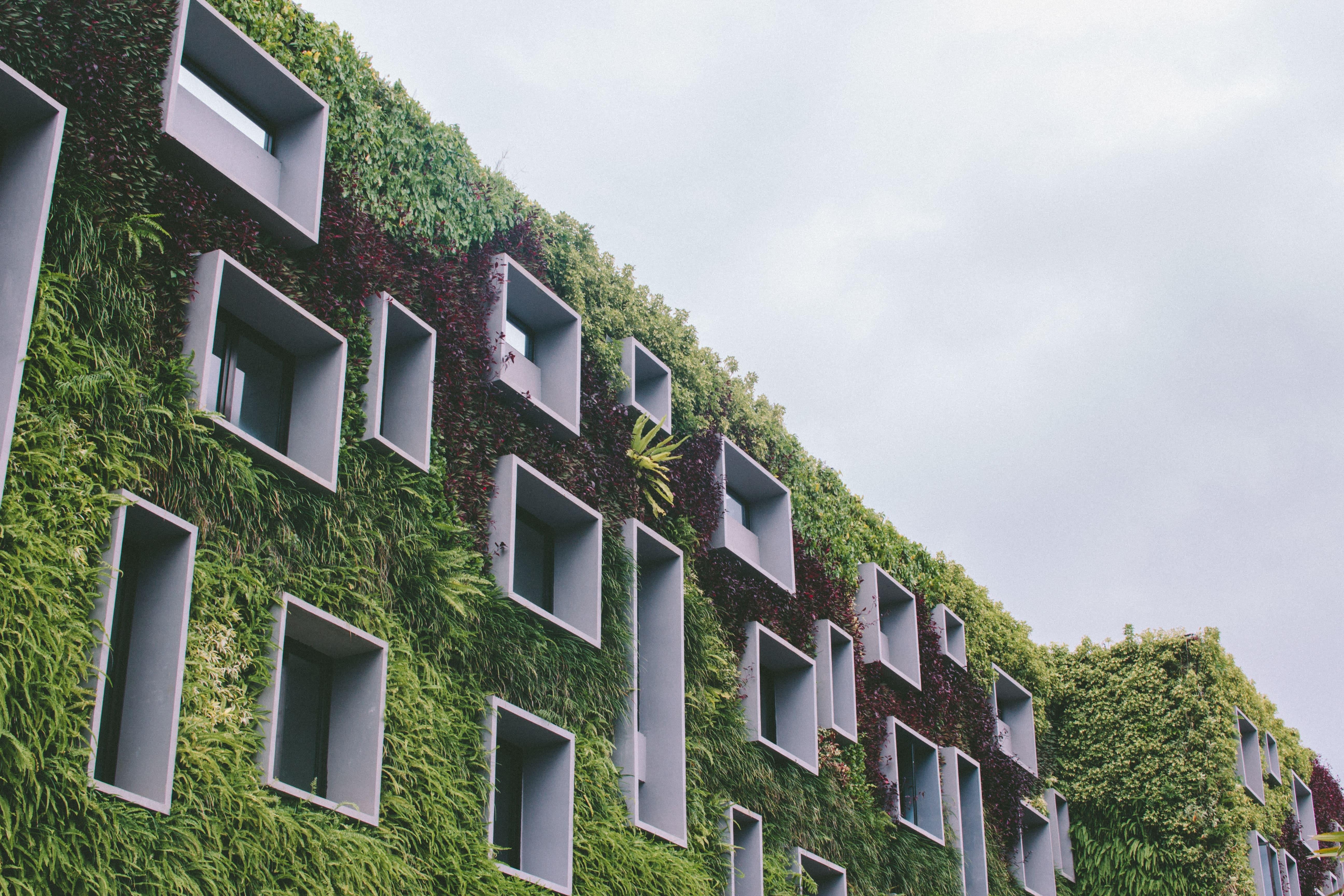 Construction durable : 3 arguments pour un BTP plus vert !