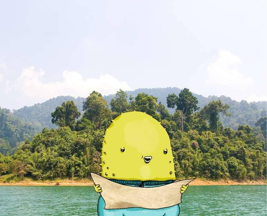 7 réflexes à avoir pour survivre sur une île déserte