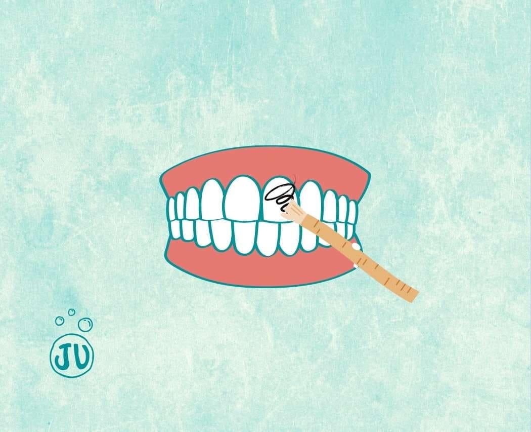 Comment se brosser les dents avec un baton de Siwak