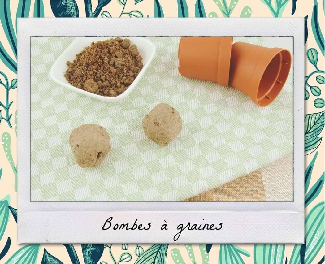Bombes de graines DIY : comment fabriquer des bombes fleuries ?