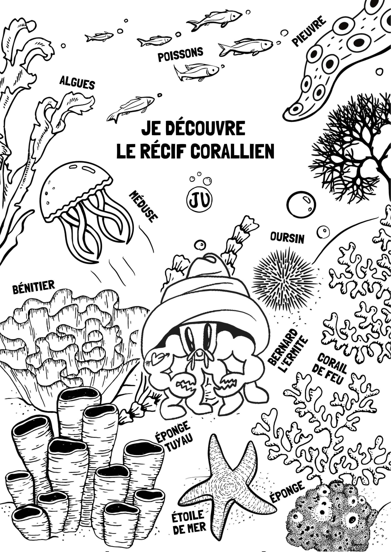 Coloriage animaux marin recif corallien eponge de mer, oursin, poisson, benitier, corail