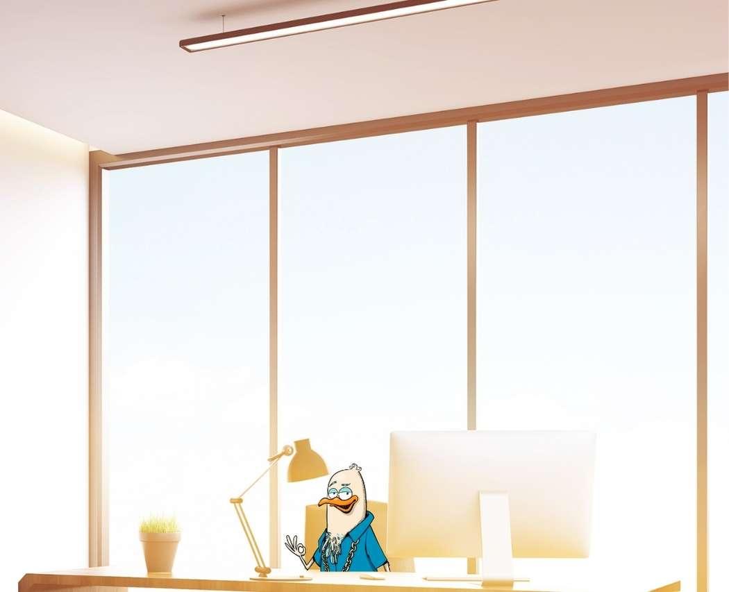 Amenager son bureau avec lumiere naturelle fenete