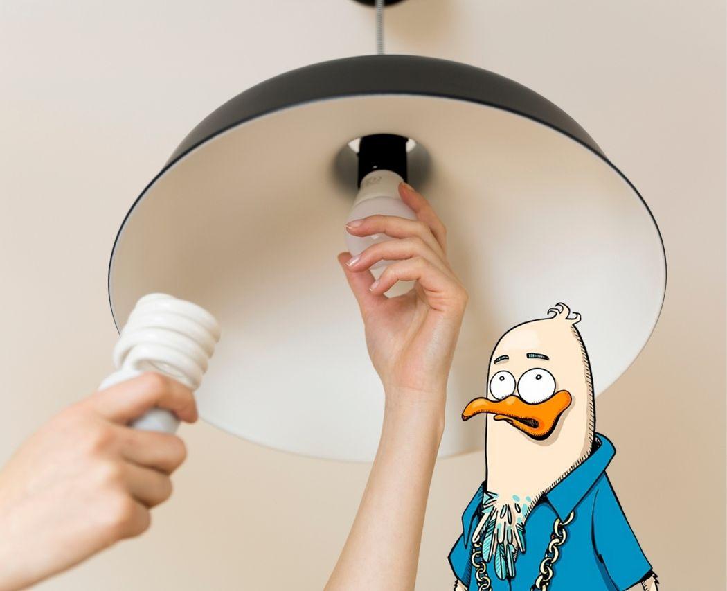 Installer ampoules basse consommation pour economiser electricite