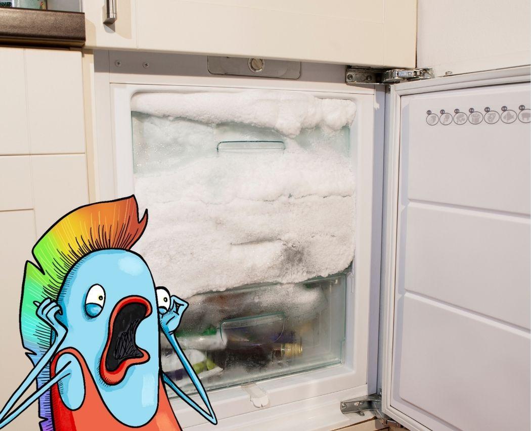 Degivrer son frigo et congelateur pour reduire sa consommation d'electricite