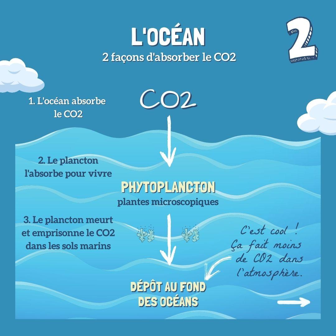 Absorption mecanique CO2 par phytoplancton