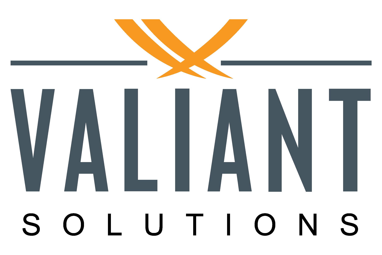 Valiant Solutions LLC's  logo