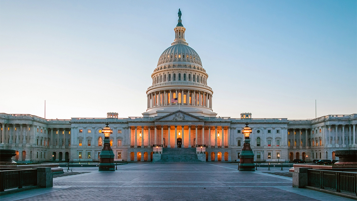 Image of the US Capitol representing US federal government