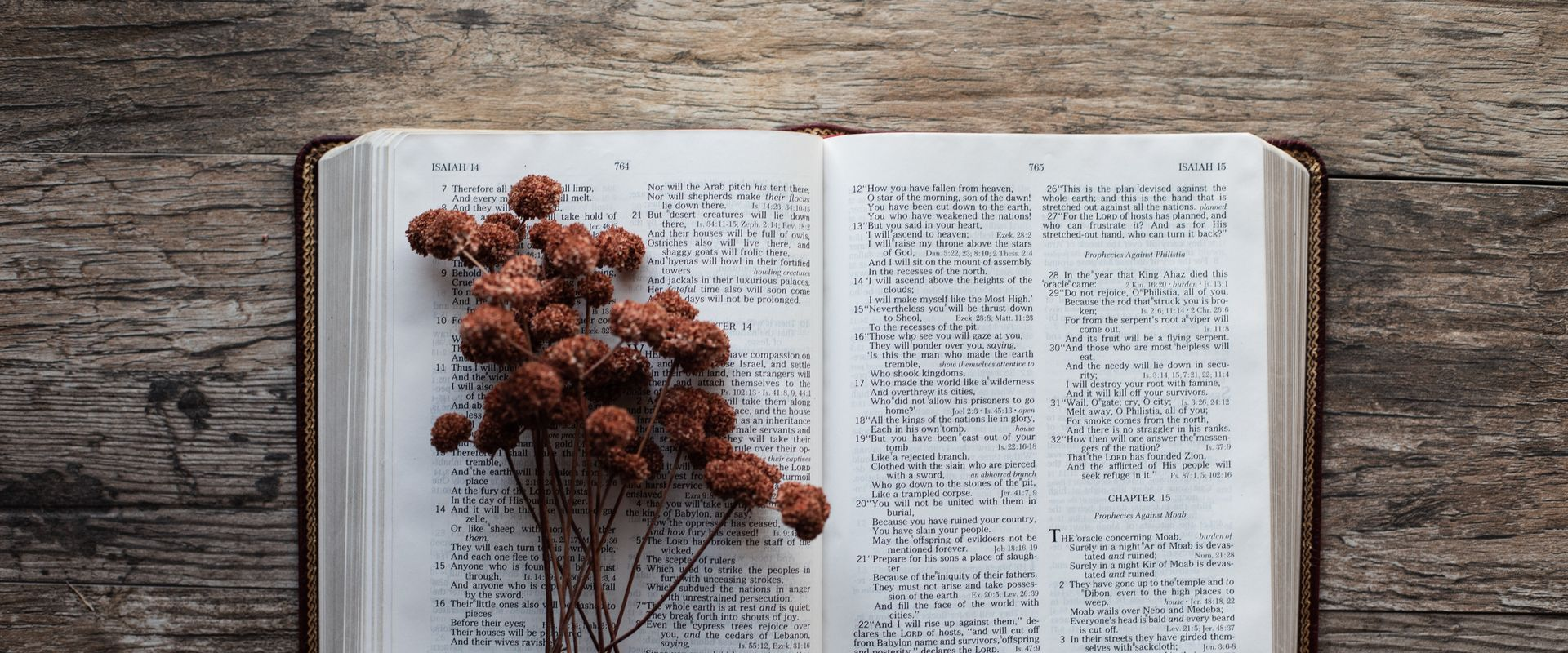flowers on the Bible