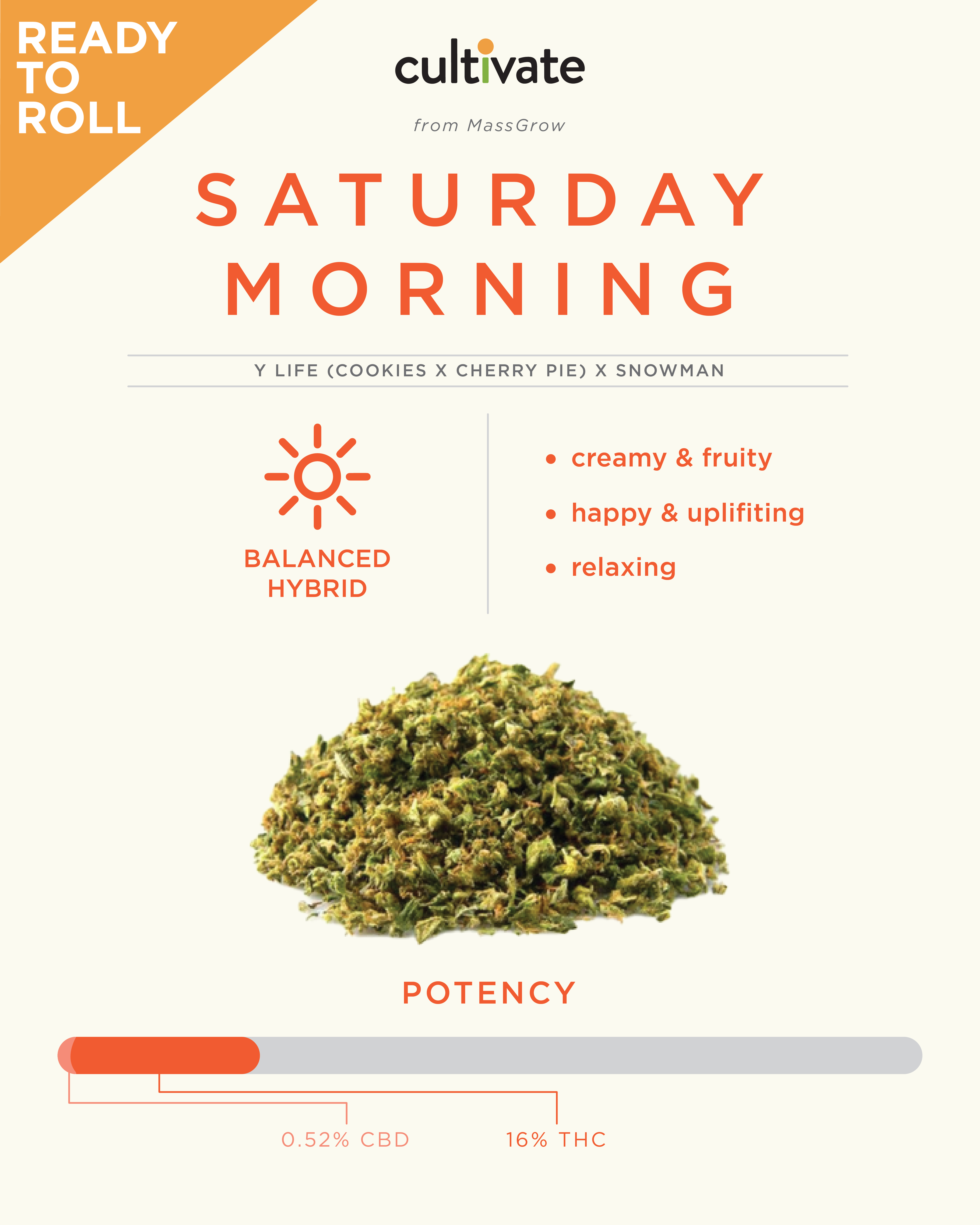 MA Strain Reviews - Saturday Morning