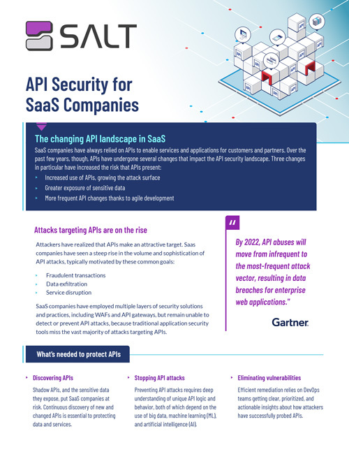 API Security for Tech SaaS Overview