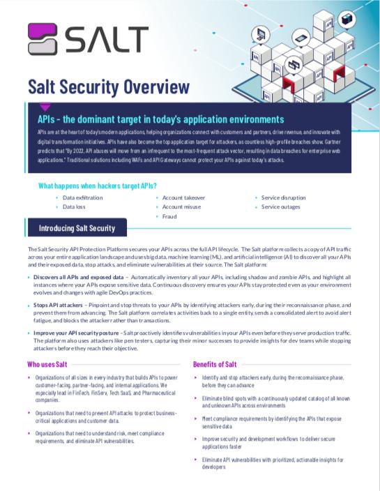 Salt Executive Overview