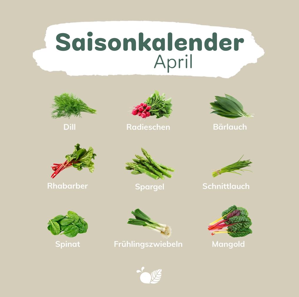 wyldr Saisonkalender April