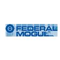 Federal Mogul Goetze