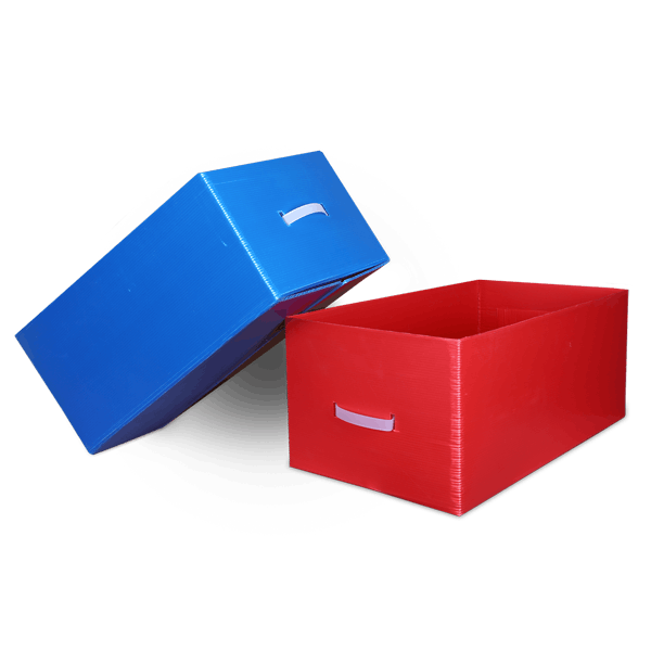 Regular Slotted Box