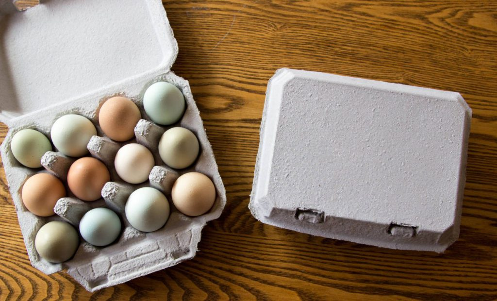 Egg Cartons - types of packaging boxes