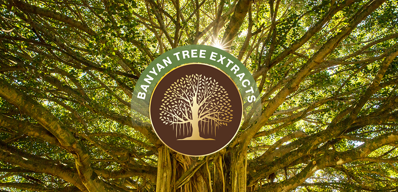 SESA Banyan Tree Extracts