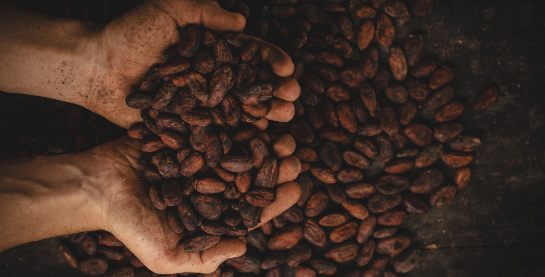 Cocoa beans - confectionary