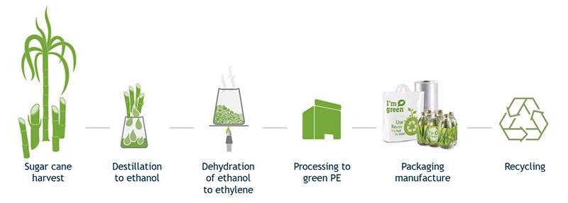 Packaging Innovation - Plant Based Beverage Packaging