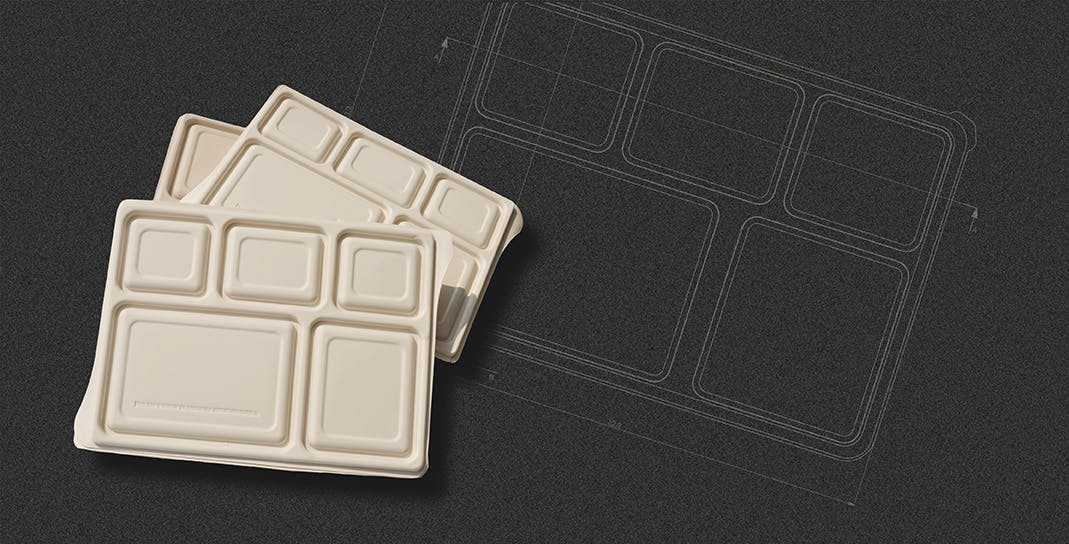 packaging challenges -meal-tray
