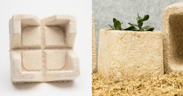 IKEA Mushroom-based Packaging - Zero Waste Packaging