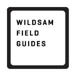 Wildsam