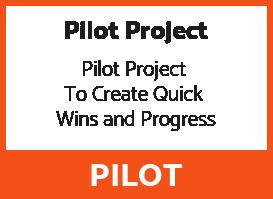 Pilot Project Process Box