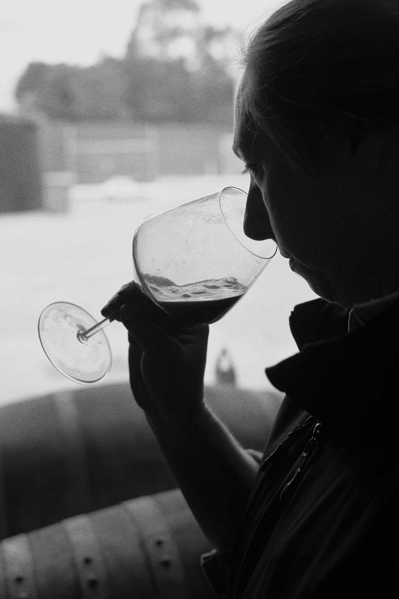 Zonzo Caroline sniffing wine.