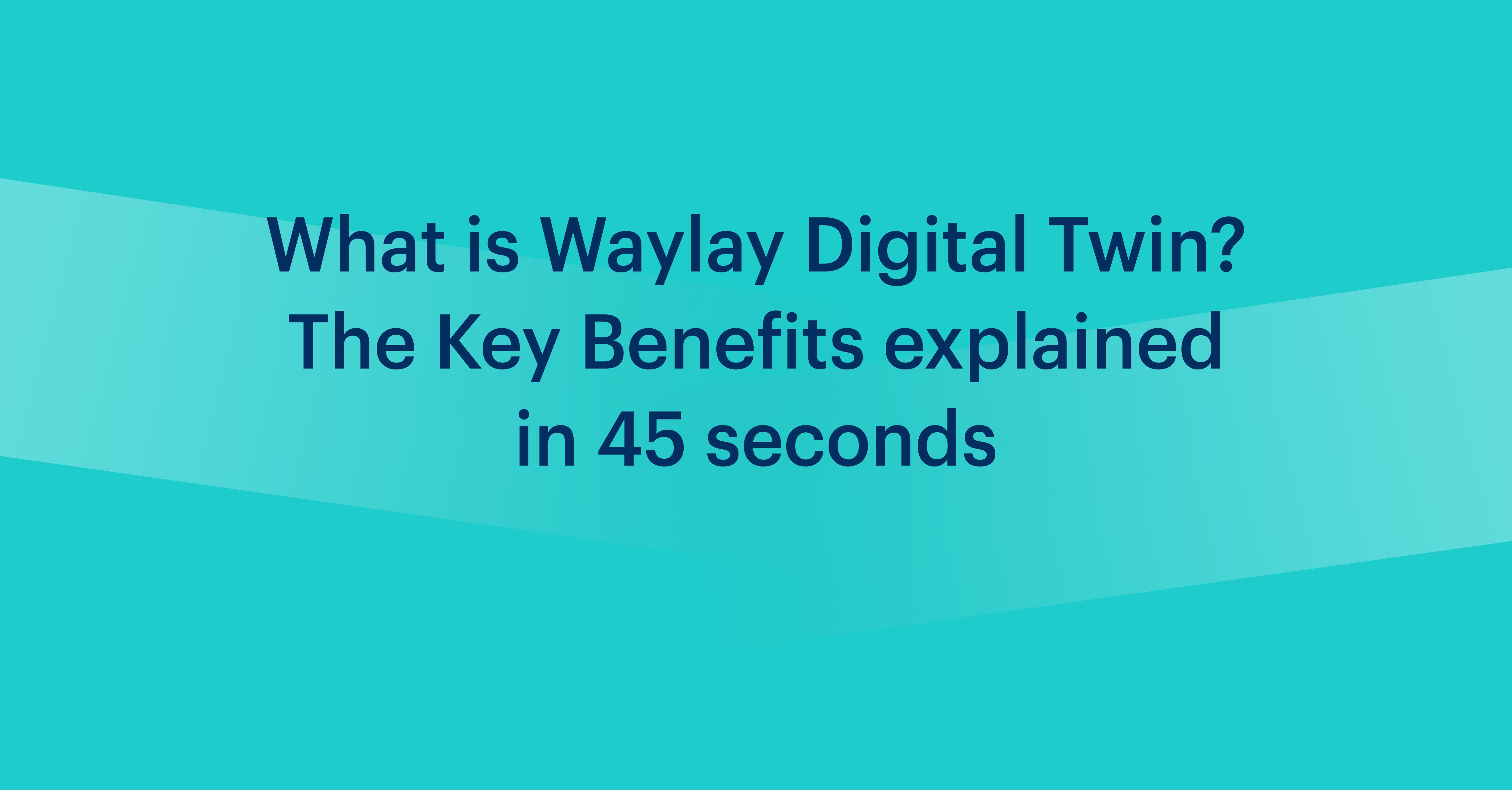 Understanding Waylay Digital Twin for Salesforce