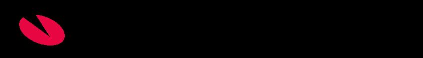 E-conomic partner logo