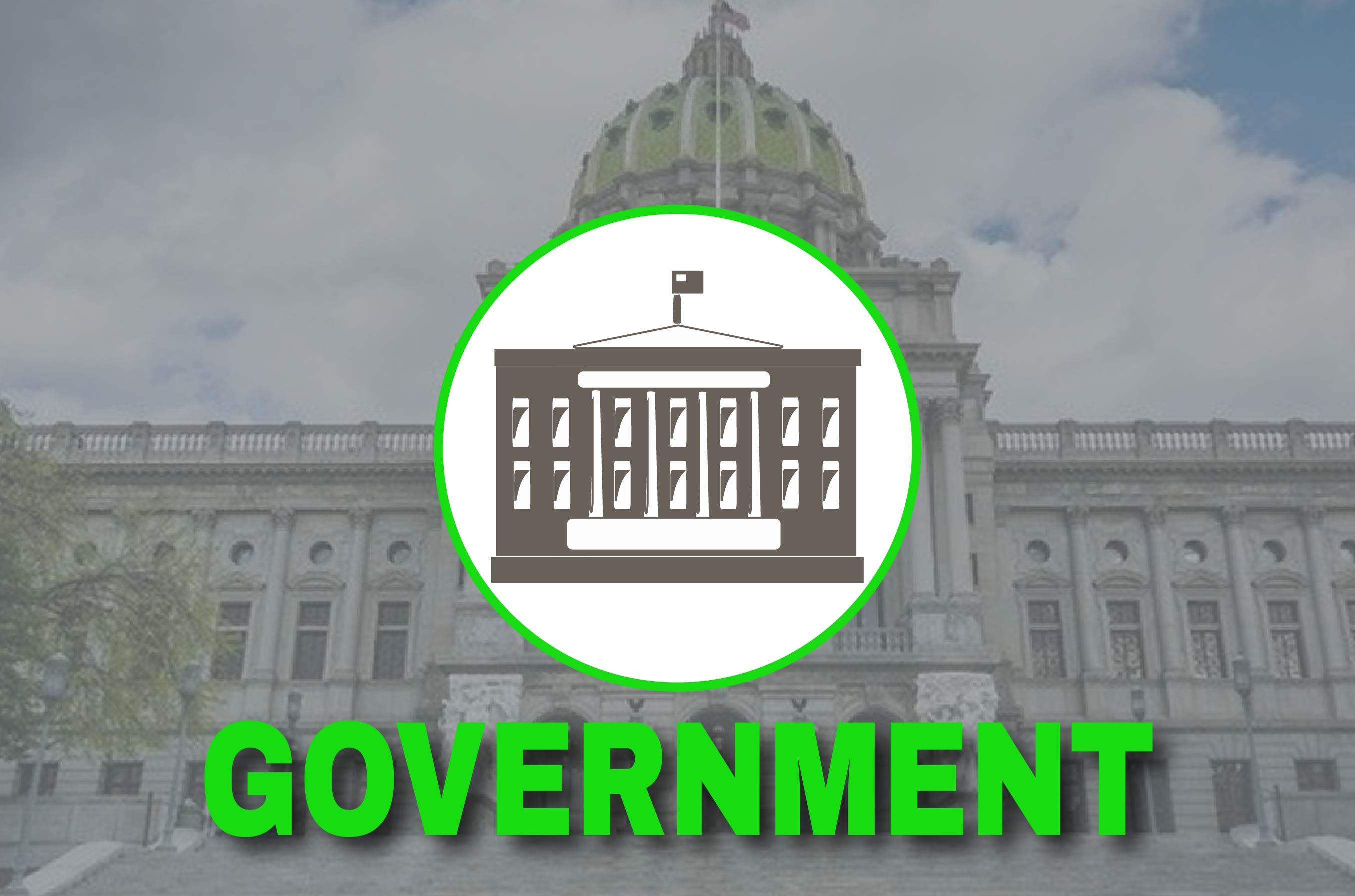 government industry experience