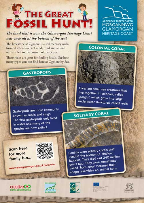 The Great Fossil Hunt